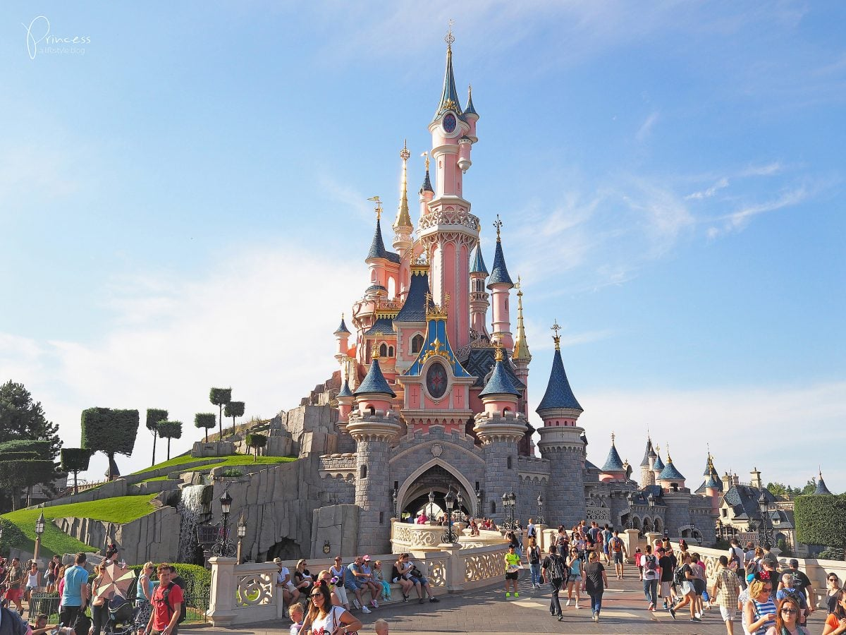 amusement park and euro disney essay However, the expectation of a successful first disney theme park in europe was just a dream there were barely 50,000 visitors on the opening days while it was expected 500,000 visitors (hill, 2000.