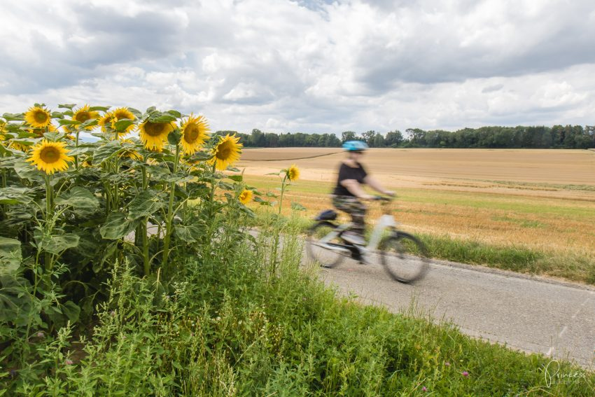 Ausflugstipp: Mit dem E-Bike um den...