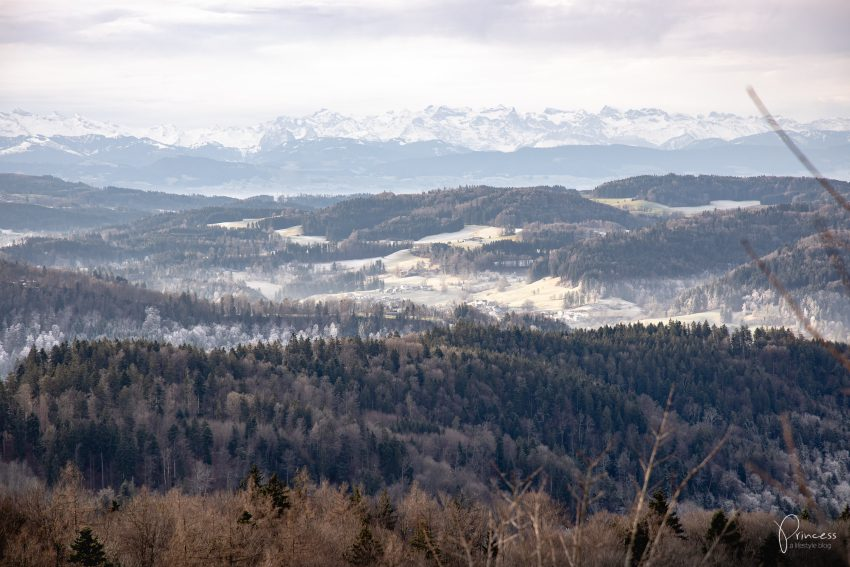 Ruine Schauenberg - Ausflugstipp bei...